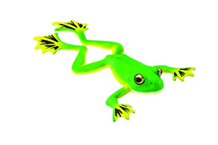 FLYING TREE FROG | NEW