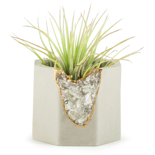 Yellow Calcite Geode Vessel - Featured by The NY Times! 1