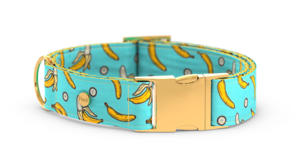 Pixeli Handmade Dog Collar - Diddy - Gold