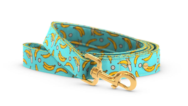 Pixeli Handmade Dog Leash - Diddy - Gold