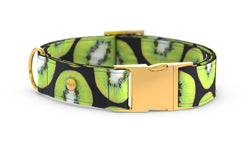 Pixeli Handmade Dog Collar - Kiwi - Gold