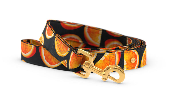 Pixeli Handmade Dog Leash - Orange - Gold