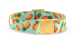 Pixeli Handmade Dog Collar - Pineapple - Gold