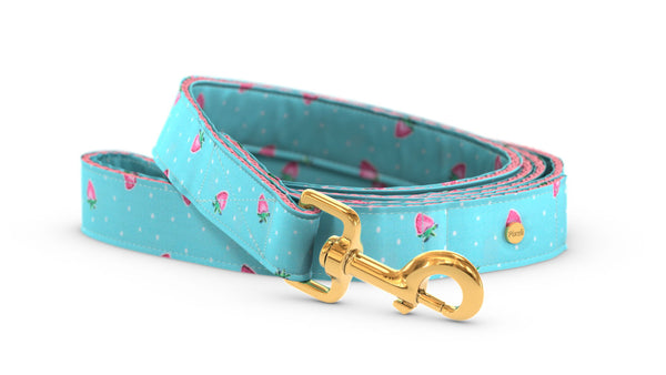 Pixeli Handmade Dog Leash - Strawberry - Gold