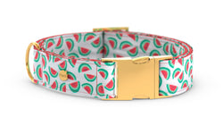 Pixeli Handmade Dog Collar - Watermelon - Gold