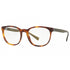 Burberry Unisex  Eyeglasses Havana/Clear w/Demo Lens BE2247-3614-52