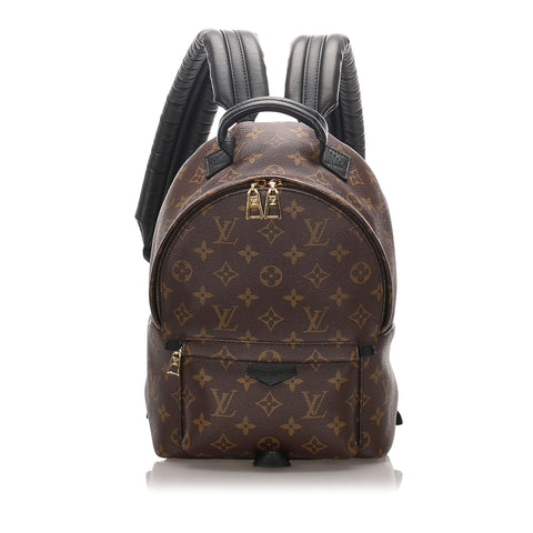 Louis Vuitton Monogram Palm Springs PM