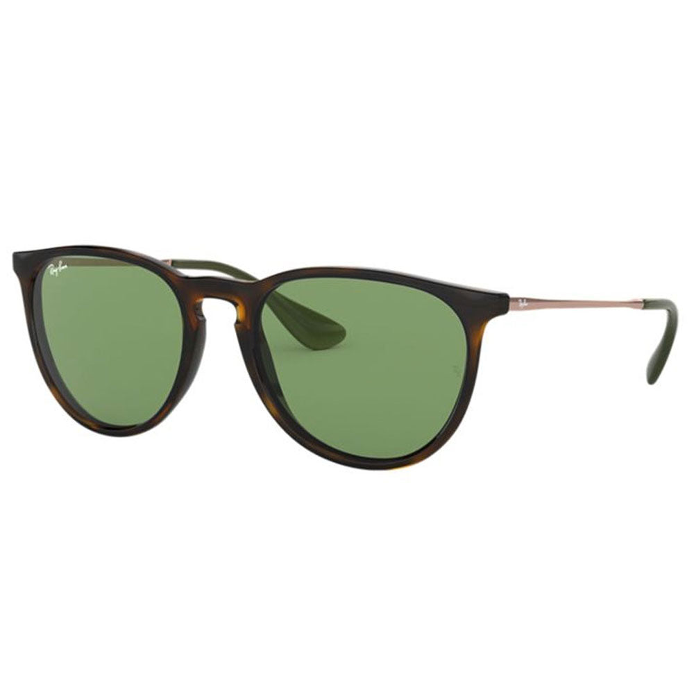 Ray-Ban Erika Color Mix Women's Sunglasses W/Green Classic Lens RB4171F 6393/2