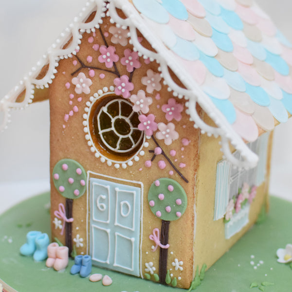 Springtime Biscuit House Decorating Classes