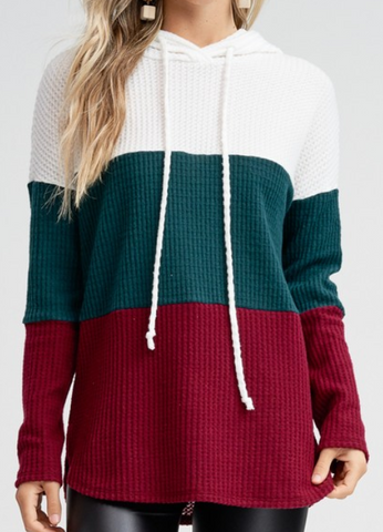 Hunter Green Color Block Knit Hoodie