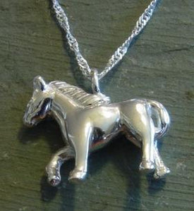 Horse Cremation Jewelry Equine Pendant Silver