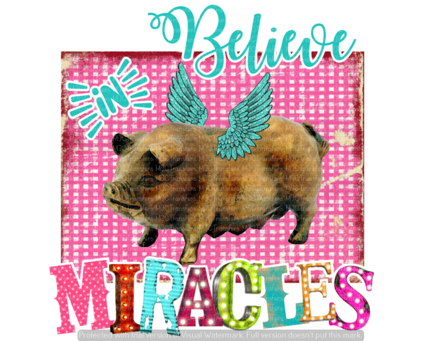 BELIEVE IN MIRACLES (SUBLIMATION)