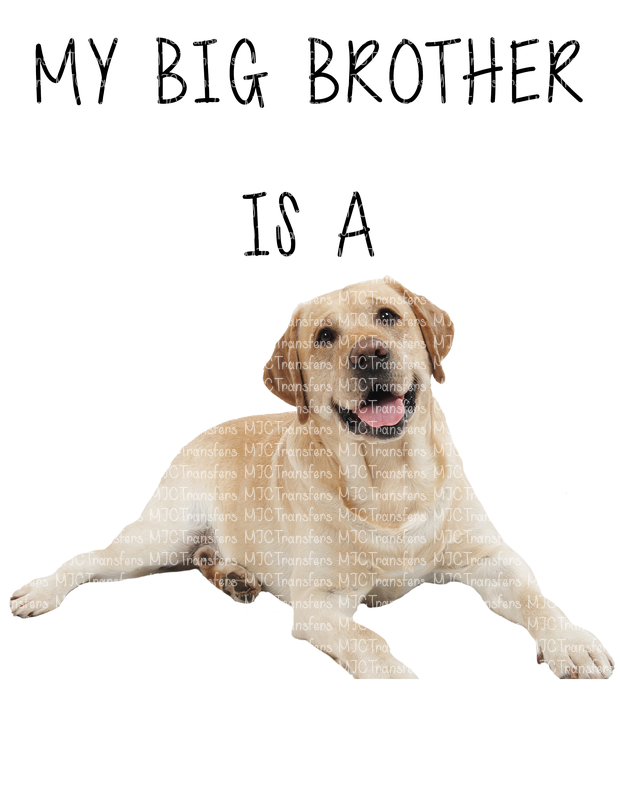 MY BIG BROTHER IS A (YELLOW LAB)