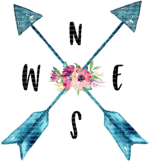 N E S W (ARROWS/FLOWER)