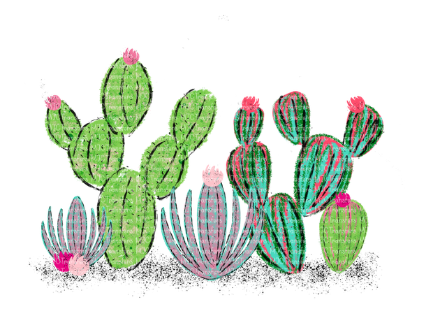 WATERCOLOR CACTUS'S (SUBLIMATION)