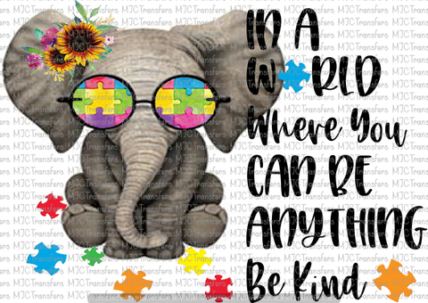IN A WORLD WHERE YOU CAN BE ANYTHING BE KIND (SUBLIMATION)