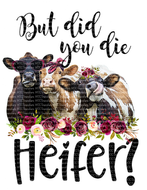 BUT DID YOU DIE HEIFER? (SUBLIMATION)