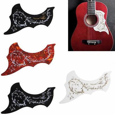 Sticker de protection anti-rayures pour guitare acoustique - Colibri