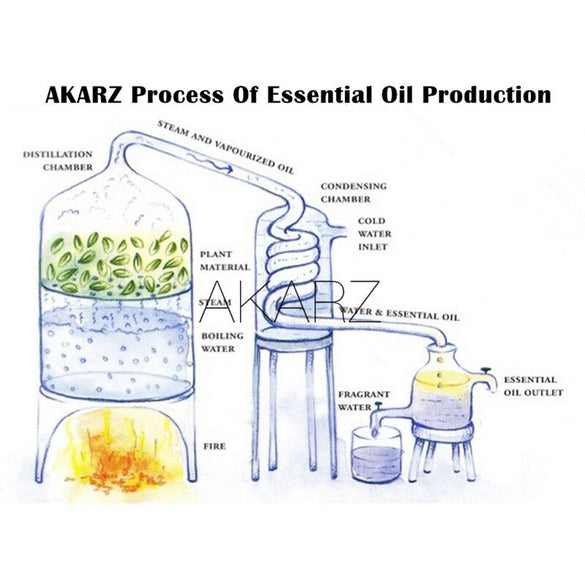 AKARZ Famous brand natural aromatherapy jasmine oil Increase skin elasticity relieve menstrual pain stretch marks scars