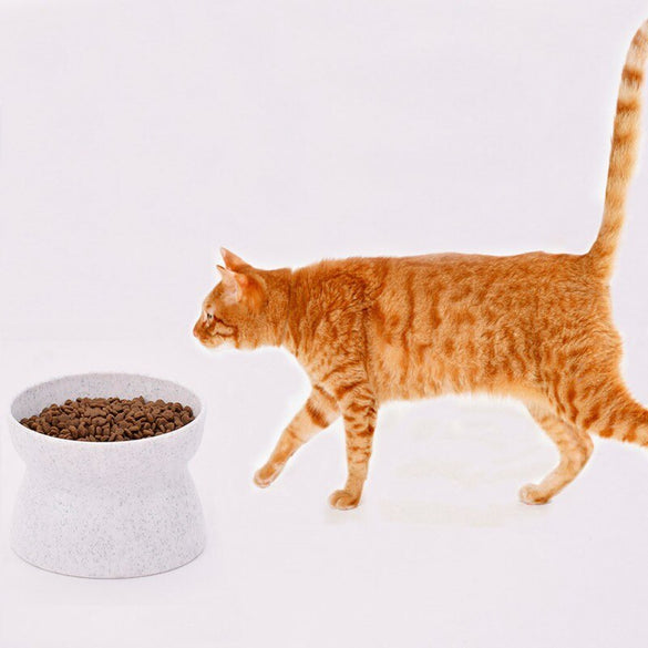 Creative Antiskid Cat Bowls With Raised Stand Pet Food And Water Bowl Perfect For Cats And Small Dogs Supplies