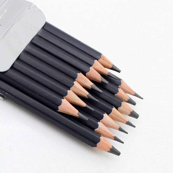 Professional Pencil Sketch Set