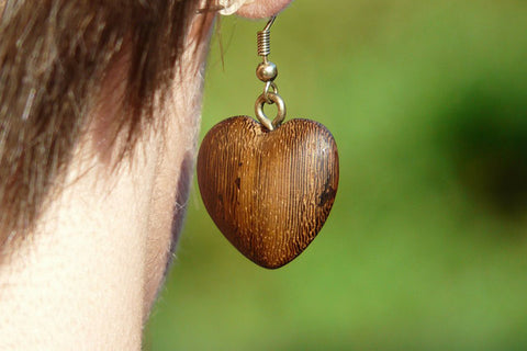 How to Make Wooden Earrings with Cricut...