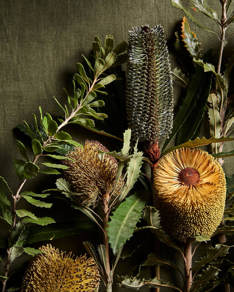 The Banksias Limited Edition Print