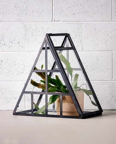 Constellation Terrarium