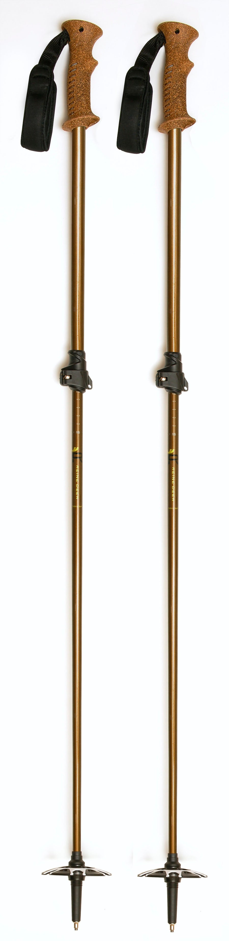 Lacquered Ski Poles - Brown