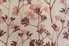 Kangaroo Paw in Rose & Earth