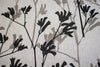 Kangaroo Paw in Black & Greylead