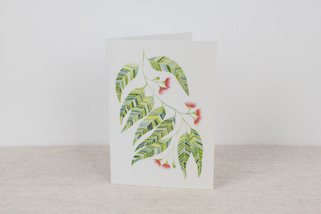 Blank card - Flowering Gum