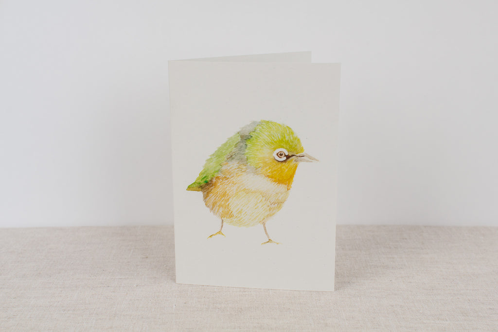 Blank card - Silver Eye Finch