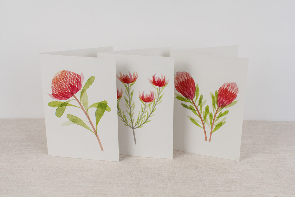 Set of 3 cards - Proteas