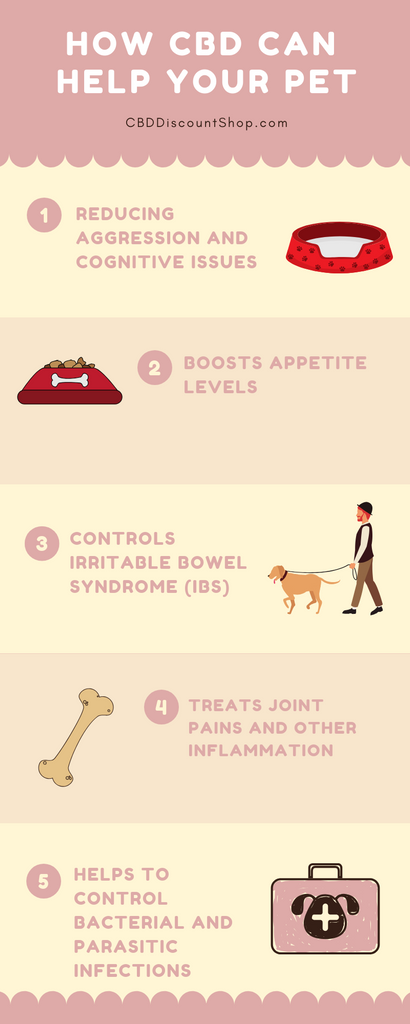 CBD for Dogs Infographic