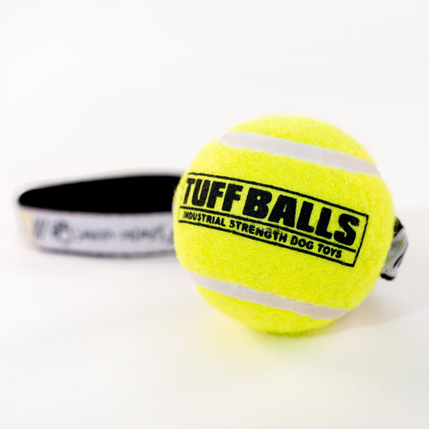 Tennis Ball Toss Pet Toy