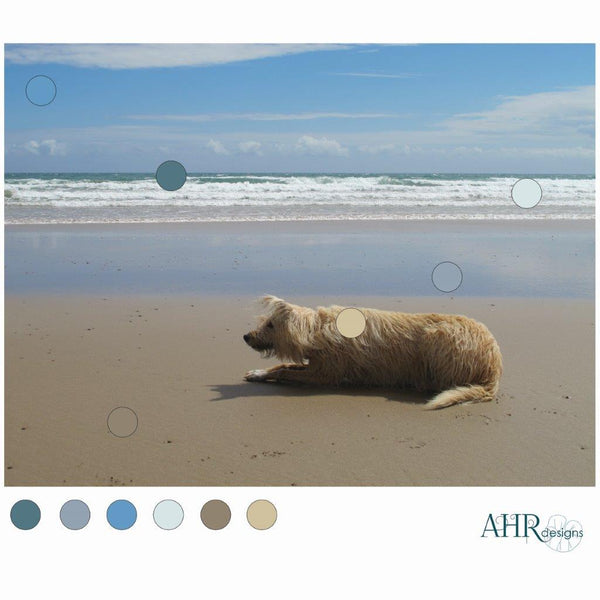 'Kelp' design colour palette taken from this photo of Luna the blonde lurcher lying in wait for her sister on Ballyquin beach.