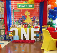 Sesame Street Birthday Party  Backdrop Personalized Step & Repeat - Designed, Printed & Shipped!