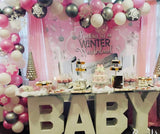 Winter Wonderland Pink Backdrop Personalized Step & Repeat - Designed, Printed & Shipped!