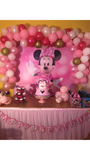 Minnie Mouse Birthday Backdrop Personalized Step & Repeat - Designed, Printed & Shipped!