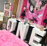 Minnie Mouse Toodles Birthday Backdrop Personalized  - Designed, Printed & Shipped!