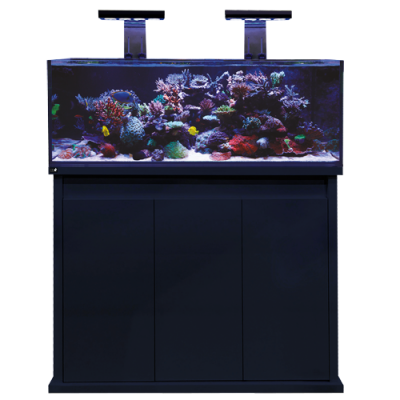 DD Pro Reef aquarium 1200 Black Gloss