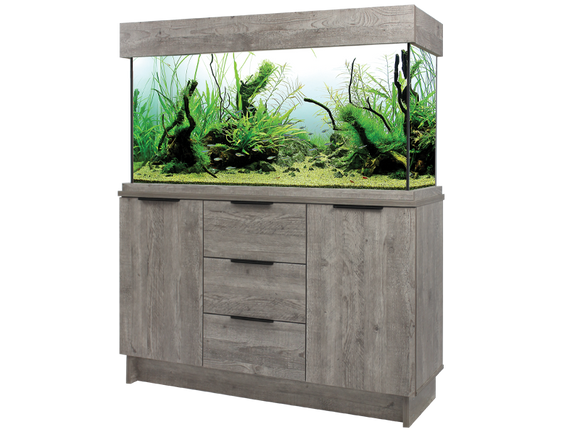 Aqua one aquarium