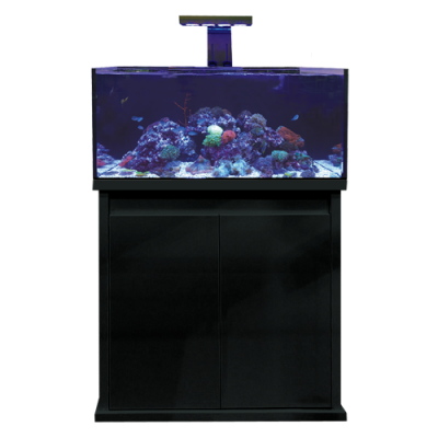 D-D Reef pro 900 Black Super High Gloss