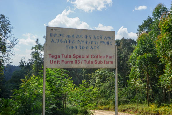 Tega & Tula special Coffee farm sign