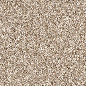 Dreamweaver Carpet | Montauk | - 720 Oxford