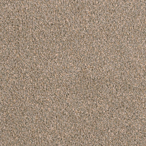 Dreamweaver Carpet | Big Time | - 317 Soapstone