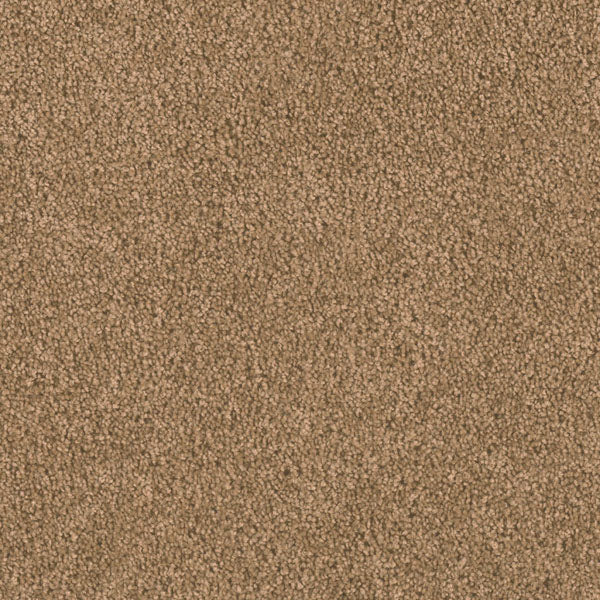 Dreamweaver Carpet | Big Time | - 510 Honey Beige