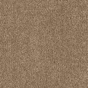 Dreamweaver Carpet | Big Time | - 829 Tumbleweed