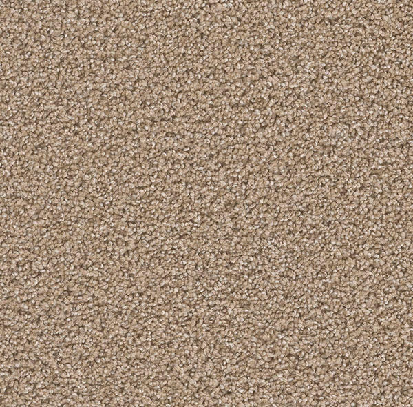 Dreamweaver Carpet | Can't Miss | - 551 Straw